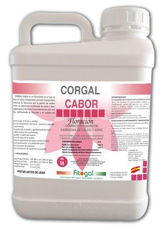 BOTELLA-5L-DIN-63-corgal-cabor