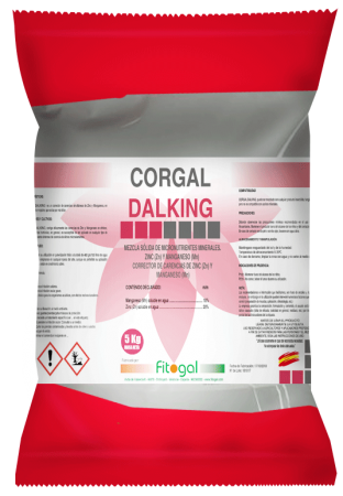 CORGAL-DALKING-KG