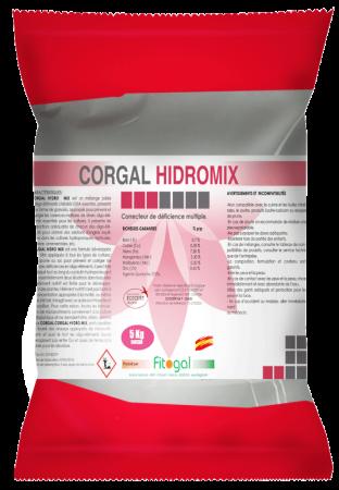 CORGAL-HIDROMIX-WSP