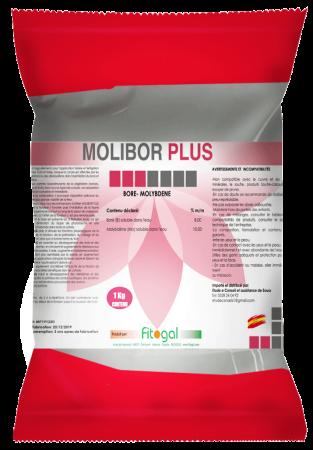 bolsa-molibor-plus