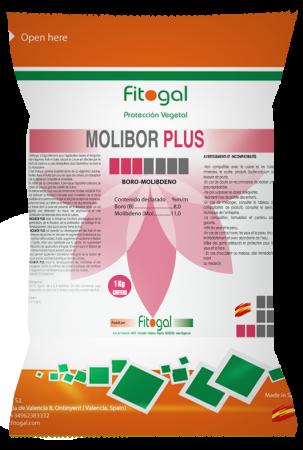 moliborplus